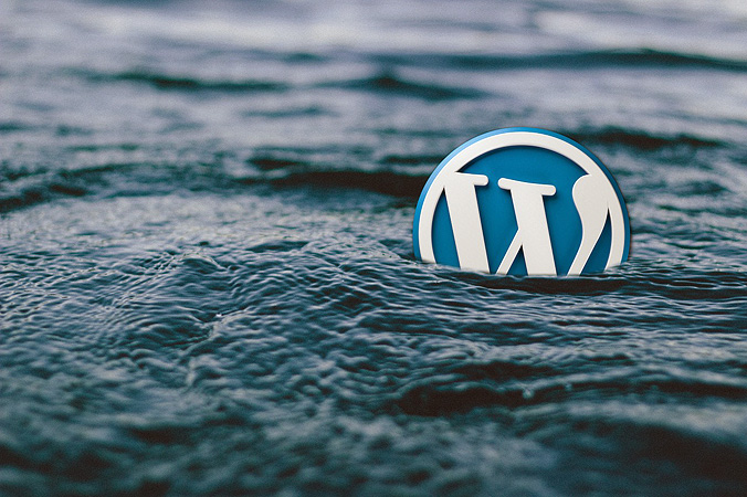 Escoger un tema de WordPress